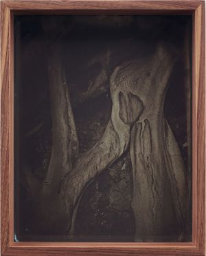 Detail (Collodion 9) by Martin Soto Climent contemporary artwork