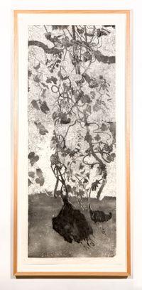 Ganguri, vine and yam by John Wolseley contemporary artwork print