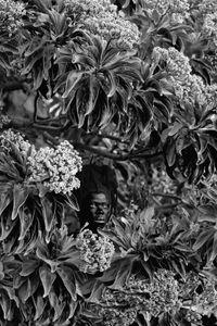 Qhamukile, Phumelobala, Mauritius by Zanele Muholi contemporary artwork photography