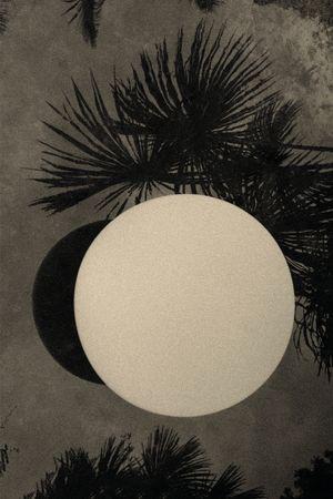 Moonvoyage by Paul Cupido contemporary artwork