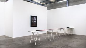 Contemporary art exhibition, Anne Noble, a line between two trees at Jonathan Smart Gallery, Christchurch, New Zealand