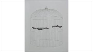Contemporary art exhibition, Firi Rahman, Enclosed at Saskia Fernando Gallery, Colombo