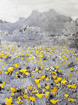 Landscape and yellow and orange by Tursic & Mille contemporary artwork