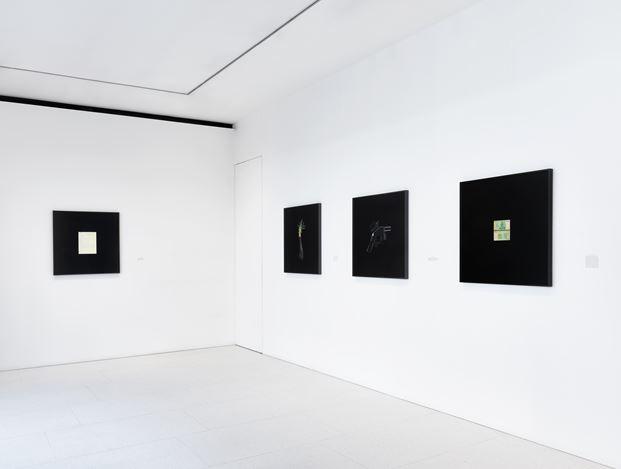 Exhibition view: Taryn Simon, A Burn Scar Visible from Space, Gagosian, Davies St, London (19 August–21 September 2019). Artwork © Taryn Simon. Courtesy Gagosian. Photo: Prudence Cuming Associates Ltd.