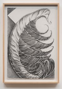 Fossils by Faith Wilding contemporary artwork works on paper, drawing