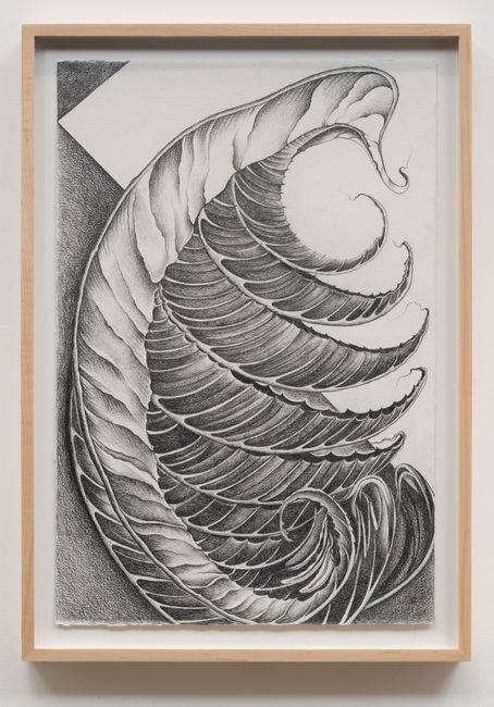 Fossils by Faith Wilding contemporary artwork