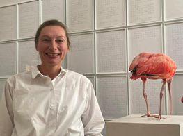 Romina Polley: Collecting Conceptual Art