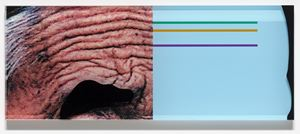Raised Eyebrows/Furrowed Foreheads: Crooked Made Straight, 2009 (For Parkett 86) by John Baldessari contemporary artwork