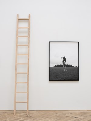 High Bias by Jonny Lyons contemporary artwork