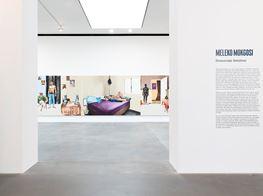 "Meleko Mokgosi<br><em>Democratic Intuition</em><br><span class=""oc-gallery"">Gagosian</span>"