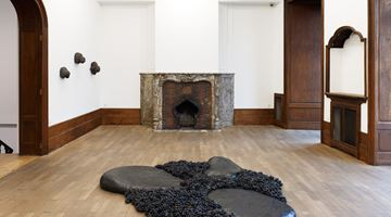 Contemporary art exhibition, Solange Pessoa, In the Sun and the Shade at Mendes Wood DM, Brussels, Belgium