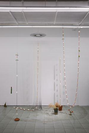 Bonsai by Tant Yunshu Zhong contemporary artwork