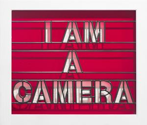 I am a Camera by Mary-Louise Browne contemporary artwork