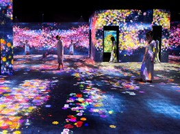 Living digital forest and future park TEAMLAB