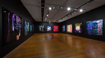 Contemporary art exhibition, Dale Frank, The Omega Variant Show at Roslyn Oxley9 Gallery, Sydney, Australia