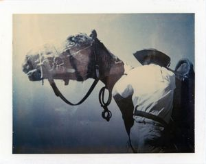 Double exposure (6) by Sidney Nolan contemporary artwork