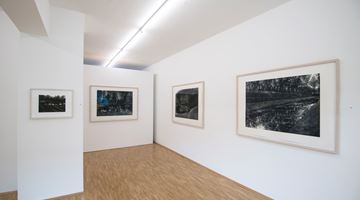 Contemporary art exhibition, Stefanie Hofer, Between the Arts and Nature at Susan Boutwell Gallery , Munich