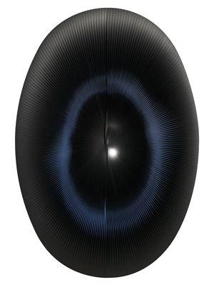 Dinamica ellittica nera by Alberto Biasi contemporary artwork