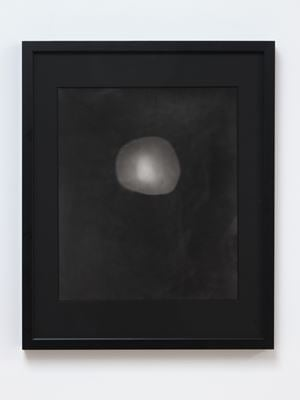 24.7.2015 Silver Bromide Photogram. 1920.391 North Otago. Collections of Museum of Archaeology and Anthropology, Cambridge, UK by Areta Wilkinson & Mark Adams contemporary artwork