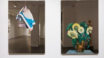 Contemporary art exhibition, Group Exhibition, Domestic Alien at Gazelli Art House, Baku