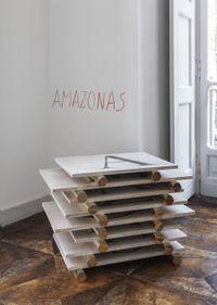 America (America - Amazonas, Tapajos, Orinoco, Purus, Vaupes, Tocantins, Xingu) by Lothar Baumgarten contemporary artwork sculpture