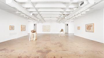 Contemporary art exhibition, Gerhard Marx, Near Distant at Goodman Gallery, Johannesburg