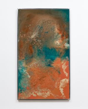 Birdsong Limiter by Kevin Harman contemporary artwork
