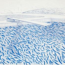 David Hockney contemporary artist