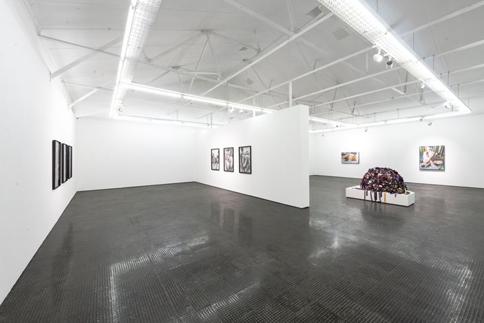 Exhibition view: Frances Goodman, Uneventful Days, SMAC Gallery, Cape Town (31 October–5 December 2020). Courtesy SMAC Gallery.
