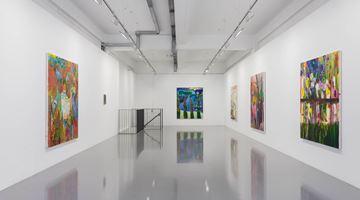 Contemporary art exhibition, Shara Hughes, Unmanageable at Pilar Corrias, Eastcastle Street, London
