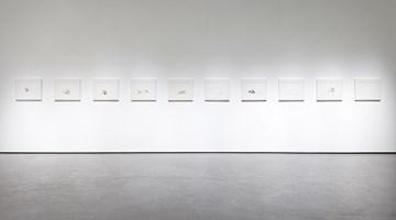 Contemporary art exhibition, Wang Yuping, Décadence at Wooson Gallery, Daegu
