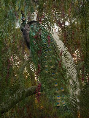 Untitled #178 by Simen Johan contemporary artwork