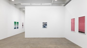 Contemporary art exhibition, Annette Kelm, Knots at Andrew Kreps Gallery, New York