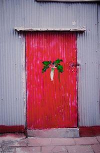 Daikon by Honggoo Kang contemporary artwork photography