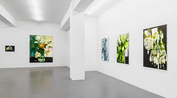 Contemporary art exhibition, Clare Woods, If Not Now Then When at Buchmann Galerie, Berlin