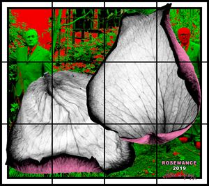 ROSEMANCE by Gilbert & George contemporary artwork