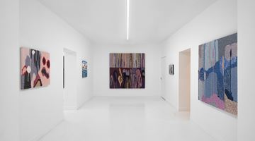 Contemporary art exhibition, Miranda Fengyuan Zhang, A World Without Us at Capsule Shanghai, China