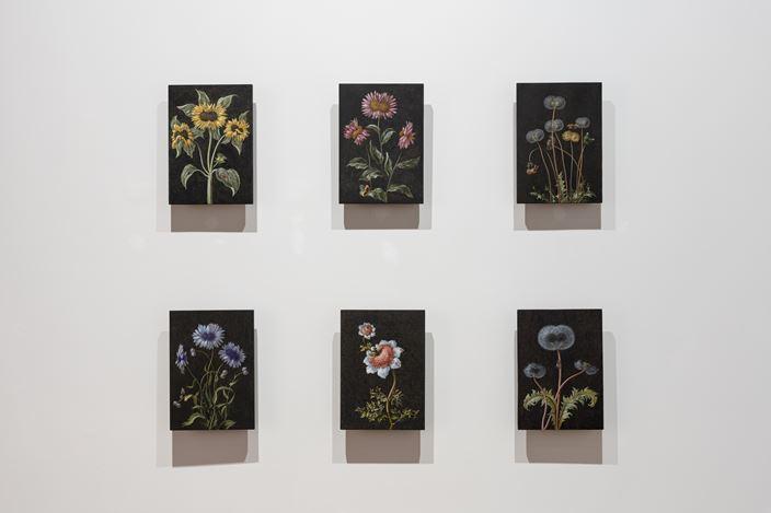 Exhibition view: Laurent Grasso, Future Herbarium, Perrotin, Shanghai (10 November 2020–16 January 2020). Courtesy the artist and Perrotin.Photo: Mengqi Bao.
