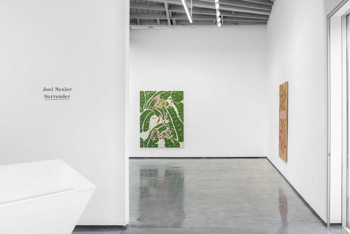 Exhibition view: Joel Mesler, Surrender,David Kordansky Gallery, Los Angeles (23 January–6 March 2021). Courtesy David Kordansky Gallery.