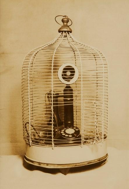 Buddhist Temple's Bird Cage by Kansuke Yamamoto contemporary artwork