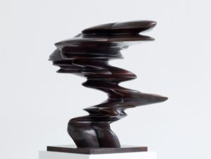 Gate by Tony Cragg contemporary artwork