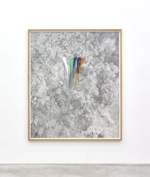 Rainbow Herbicides #3 by Thu Van Tran contemporary artwork
