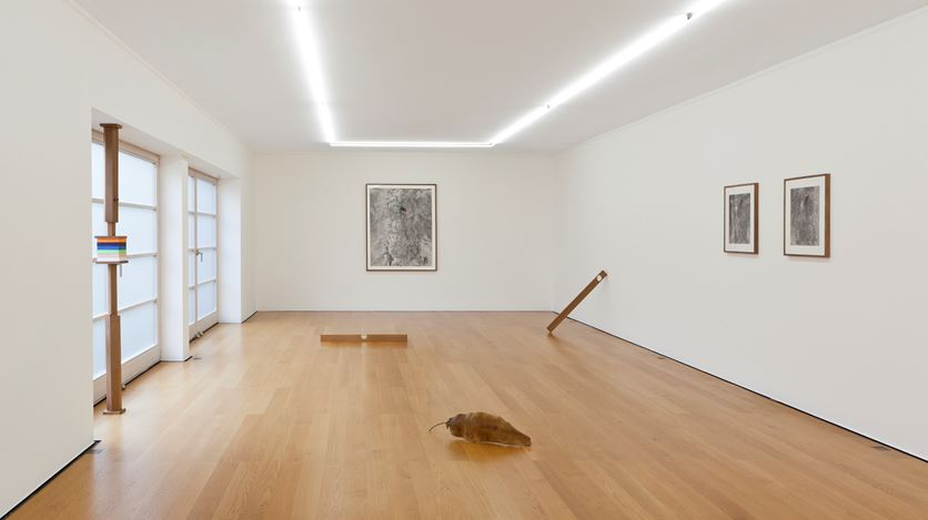 Exhibition view: Thu Van Tran, H as homme, Galerie Rüdiger Schöttle, Munich (11 September–21 November 2020). Courtesy Galerie Rüdiger Schöttle. Photo: Wilfried Petzi.
