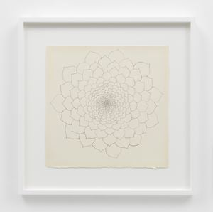Untitled (TAM.1480, Succulent [line drawing]) by Ruth Asawa contemporary artwork