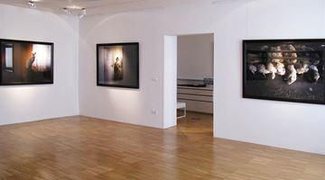 Contemporary art exhibition, Angelika Sher, Twilight sleep at Galerija Fotografija, Ljubljana