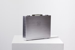 Citizenship Box by Sun Xun contemporary artwork