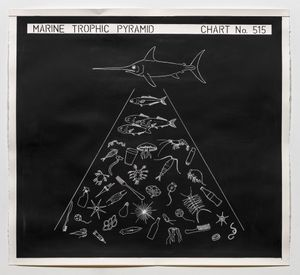 Marine Trophic Pyramid by Mark Dion contemporary artwork painting, works on paper, drawing