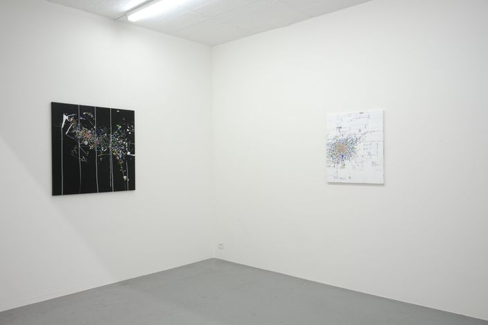 Exhibition view: Bart Stolle,low fixed media show, Zeno X Gallery, Antwerp (28 August–23 October 2021). Courtesy Zeno X Gallery.