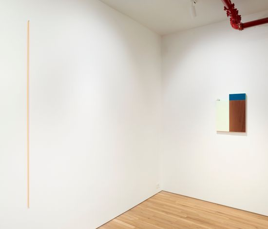 Exhibition view: Jane Bustin, The Colour of Words II, Jane Lombard Gallery, New York. (30 June–6 August 2021). Courtesy Jane Lombard Gallery.Photo:  Arturo Sanchez.