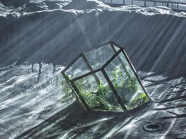 11th Shanghai Biennale, Power Station of Art, China